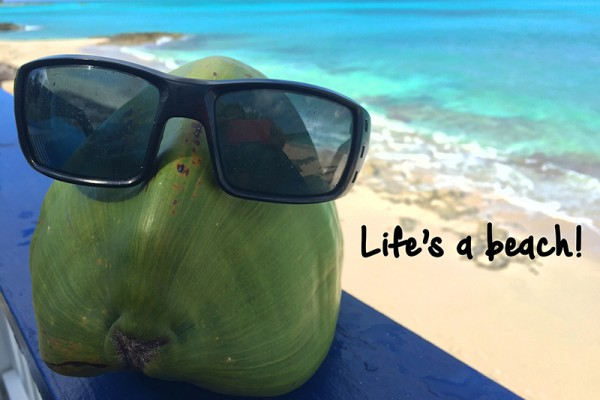 coco-on-the-beach