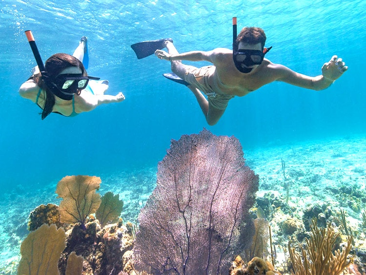 snorkel in nassau bahamas